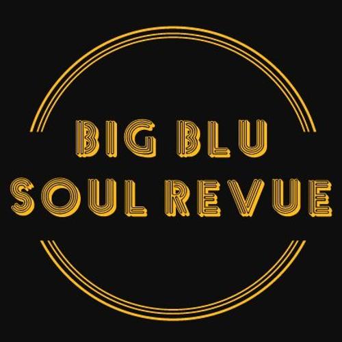 Big Blu Soul Revue's avatar