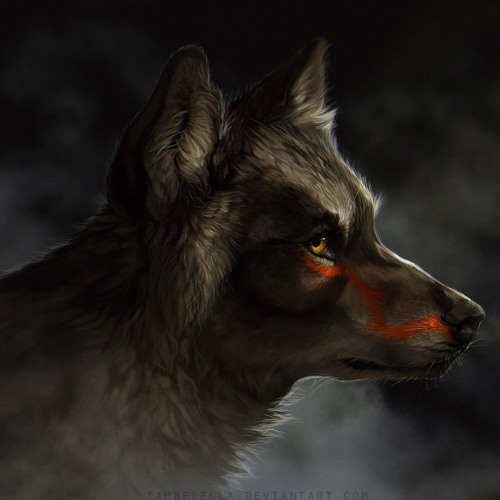 David Alejandro Gordillo's avatar