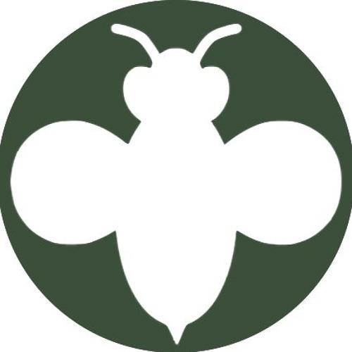 Agricology's avatar
