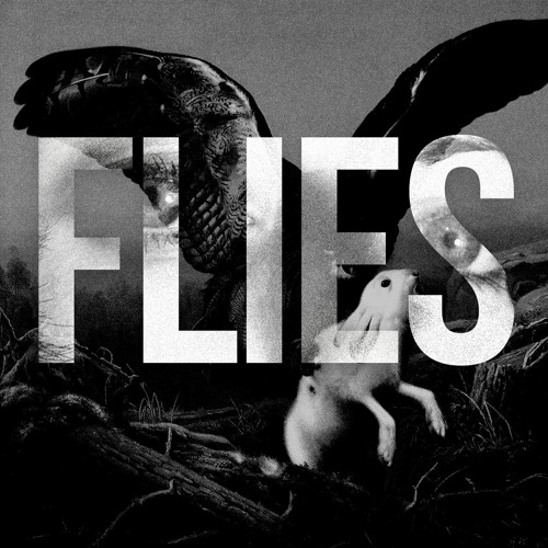 Flies Podcast's avatar