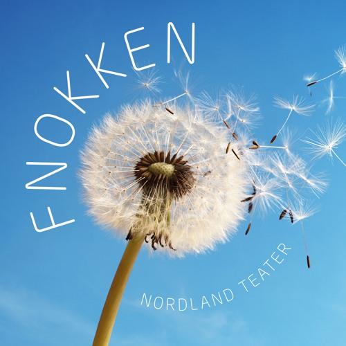 FNOKKEN's avatar