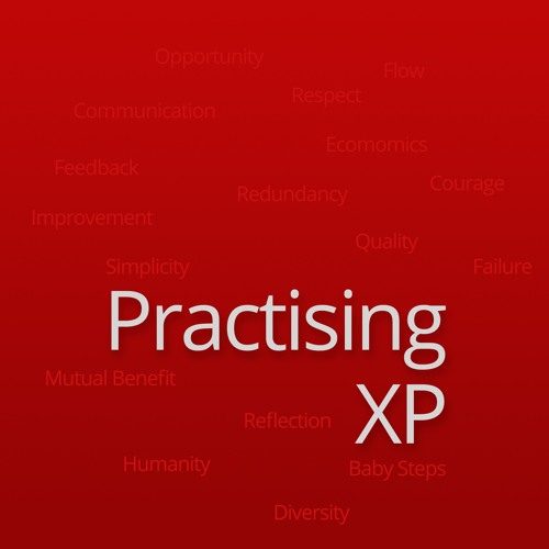 Practising XP #38 : Problems with working alone - Productivity