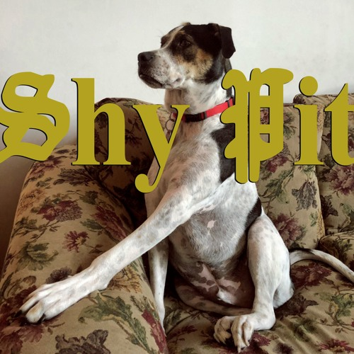 Shy Pit's avatar