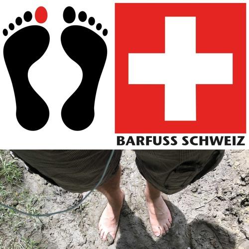 Barfussschweiz's avatar