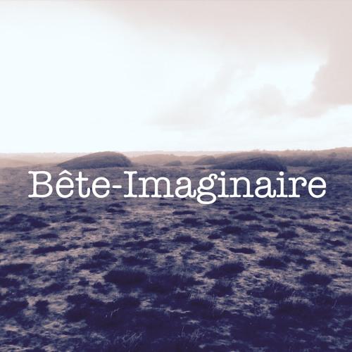 bête imaginaire's avatar
