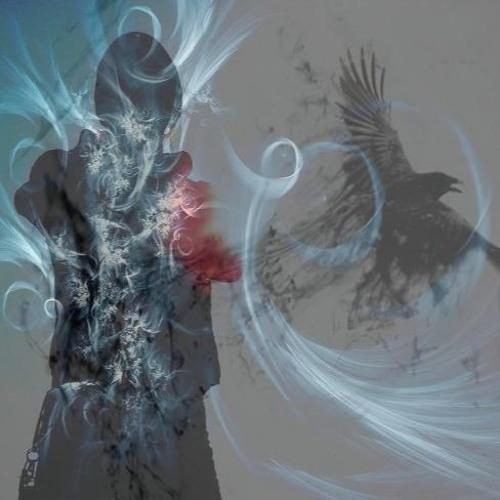 Stephen Morse:'s avatar