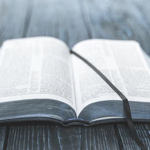 À TRAVERS LA BIBLE's avatar