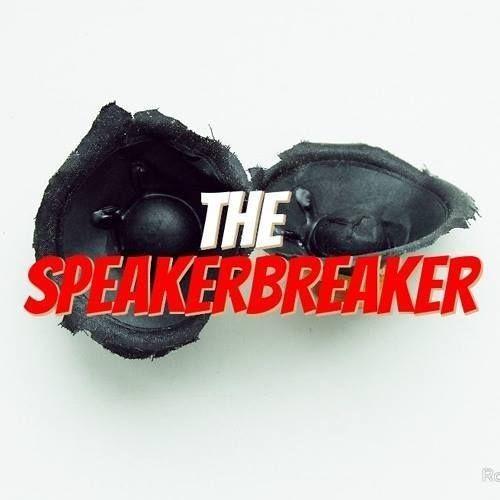 THESPEAKERBREAKER's avatar