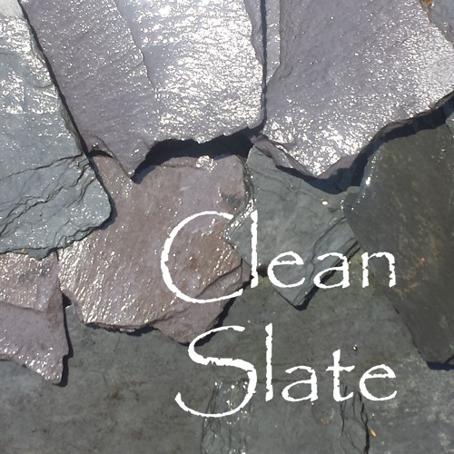 Clean Slate Duo's avatar