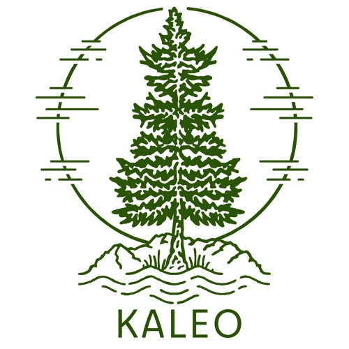 KALEO Communities's avatar
