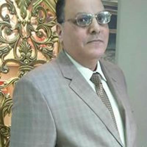ابراهيم الطلخاوي المحامى's avatar