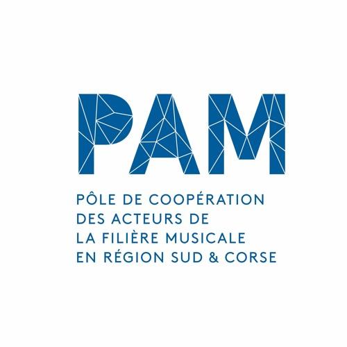 PAM POLE PACA's avatar