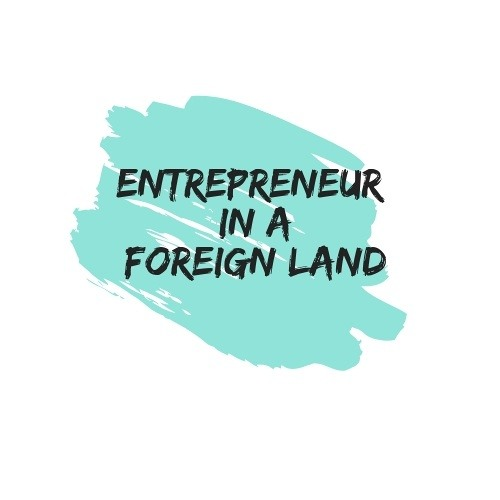 Entrepreneur In A Foreign Land's avatar