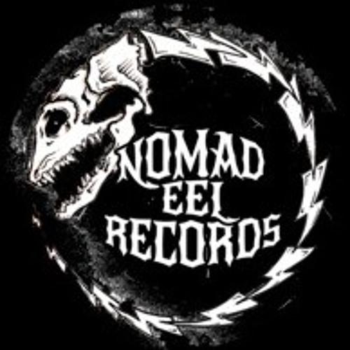 Nomad Eel Records's avatar