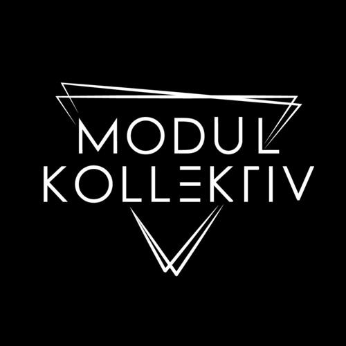 ▼ MODUL KOLLEKTIV's avatar