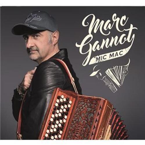 Marc Gannot's avatar