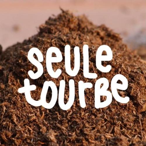 SEULE TOURBE's avatar