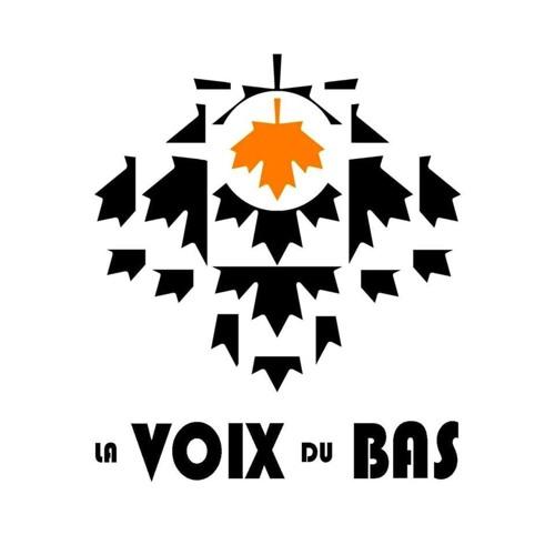 LA VOIX DU BAS's avatar