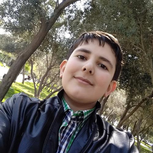 Ali Qasimov's avatar