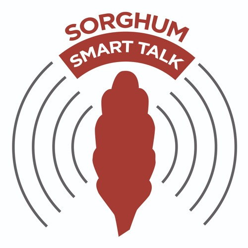 Sorghum Smart Talk's avatar