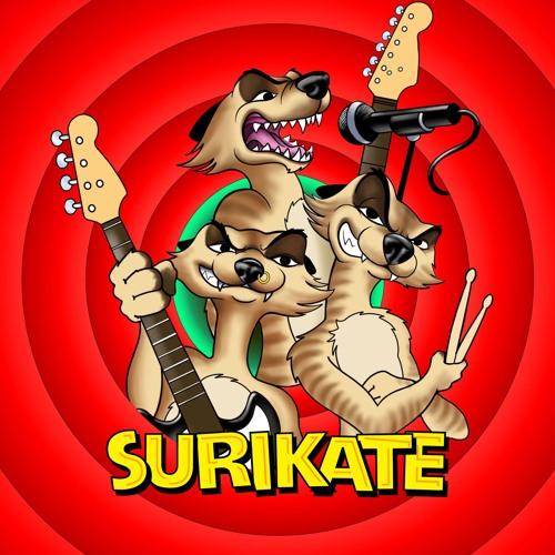 SURIKATE's avatar