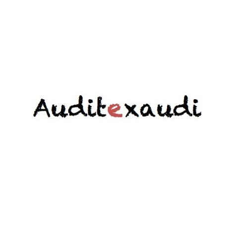 auditexaudi's avatar