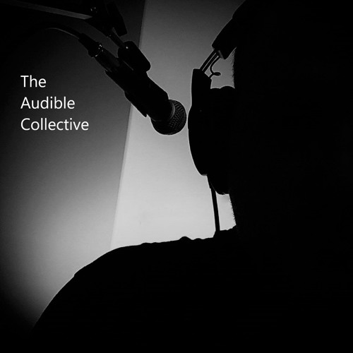 The Audible Collective's avatar