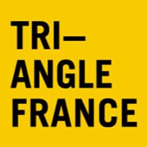 Triangle France - Astérides's avatar