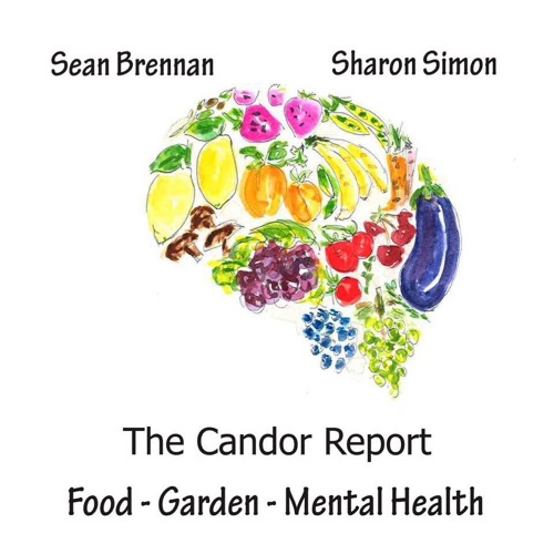 The Candor Report Podcast's avatar