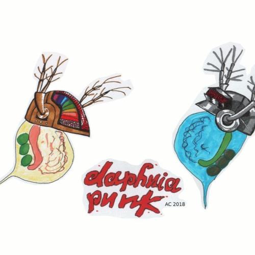 Daphnia Punk's avatar