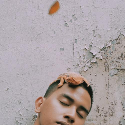 dot.jaime's avatar