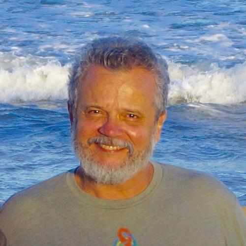 Sérgio de Avillez's avatar