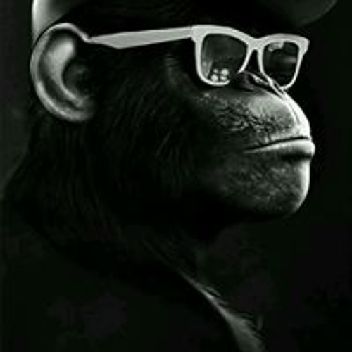 Mikey Hirsch's avatar