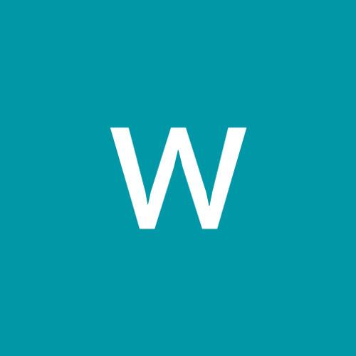wang shiwei's avatar
