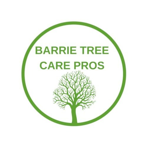 Barrie Tree Care Pros's avatar
