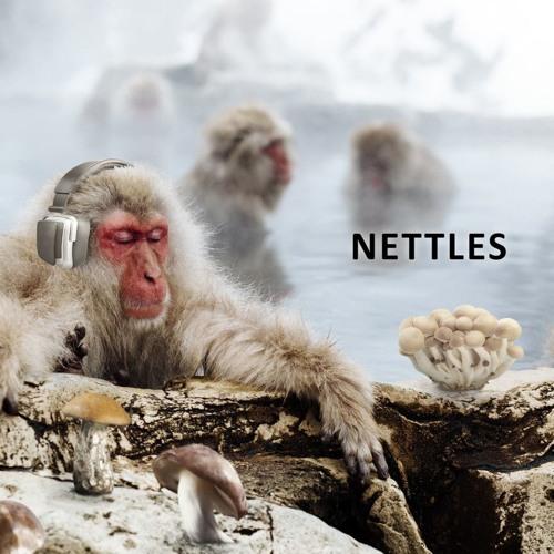 Nettles Sound Design's avatar