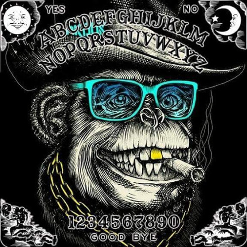 Chuck Rowe's avatar
