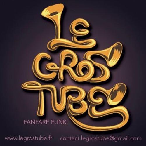 Le Gros Tube's avatar