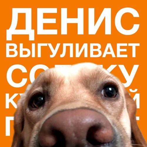 denischuzhoy's avatar