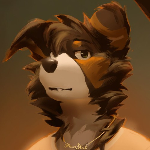 NORFAIR's avatar