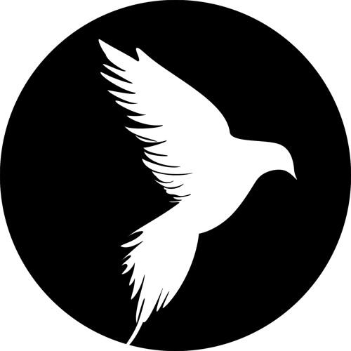 Mateo Sound's avatar