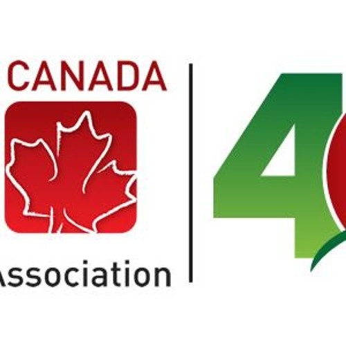 Ireland Canada Business Association's avatar