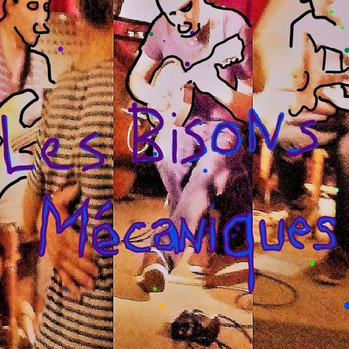 Les Bisons Mécaniques's avatar