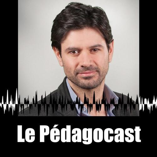 Julien Morice's avatar