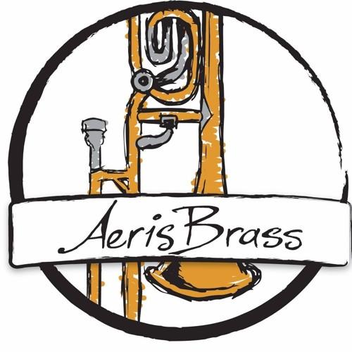 Aeris Brass's avatar