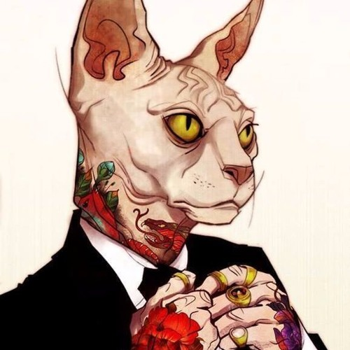 DanChoiCaDo's avatar