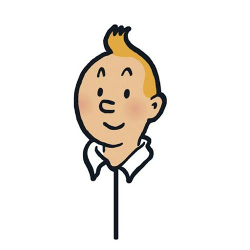 TIN TIN's avatar