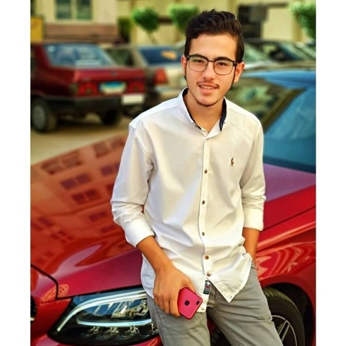 Ahmed A.EL-MaGeeed's avatar