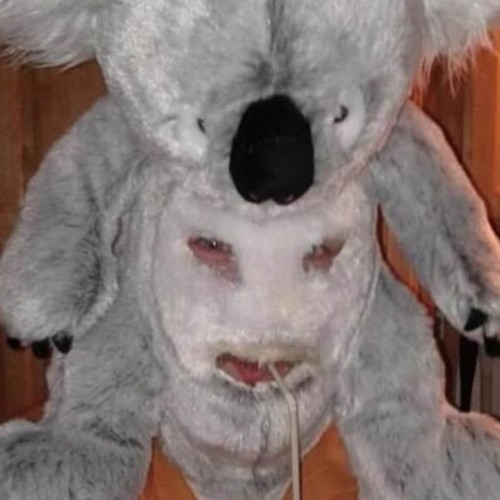 Derpy koala's avatar