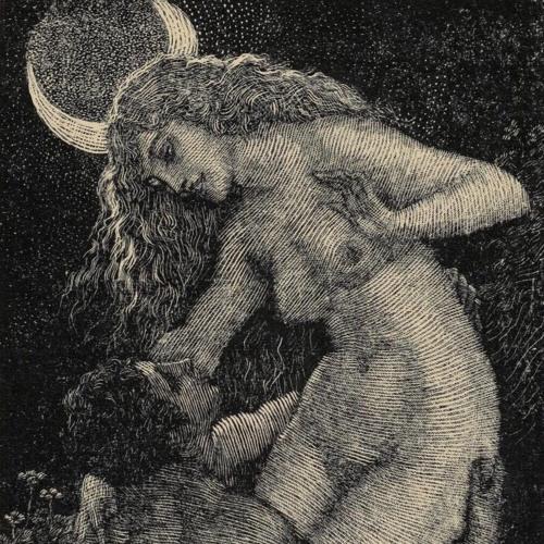 Lilium Lev's avatar